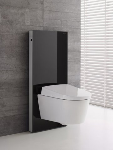 geberit monolith sanit rmodul f r wand wc 101cm. Black Bedroom Furniture Sets. Home Design Ideas
